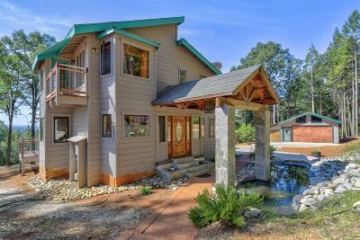 Nevada County Single Family Home For Sale: 12274 Sesame Street