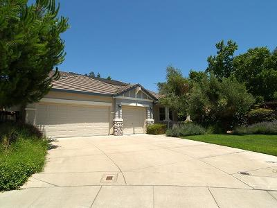 Modesto Single Family Home For Sale: 1401 Villette Court