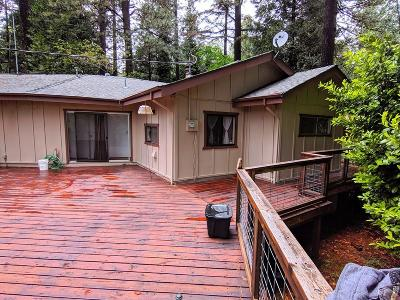 Grass Valley Single Family Home For Sale: 12191 Loma Rica Drive