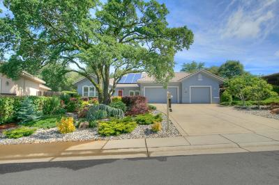 Shingle Springs Single Family Home For Sale: 117 Riesling Court