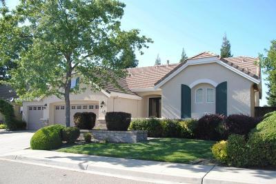 Placer County Single Family Home For Sale: 521 Oakhurst Terrace