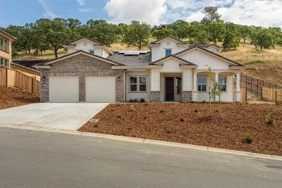 El Dorado Hills Single Family Home For Sale: 4077 Aristotle Drive