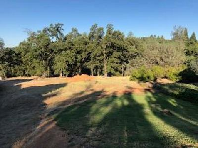 Placerville Residential Lots & Land For Sale: David Circle