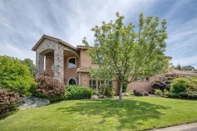 Sacramento County, Placer County, El Dorado County Single Family Home For Sale: 15374 De La Cruz Drive