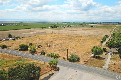 Lathrop Commercial Lots & Land For Sale: 11293 South Manthey Road