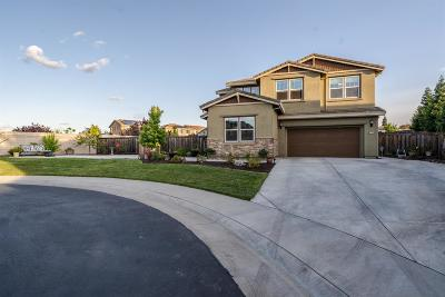 Rocklin Single Family Home For Sale: 1704 Teal Court