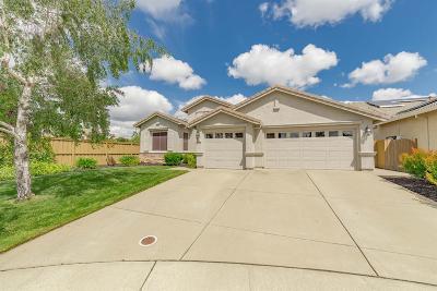Rancho Cordova Single Family Home For Sale: 10931 Viano Court