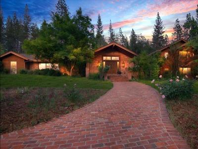 Grass Valley Single Family Home For Sale: 13655 Thoroughbred Loop
