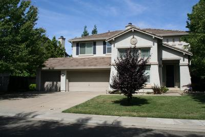 Elk Grove Single Family Home For Sale: 9716 Eralise Way