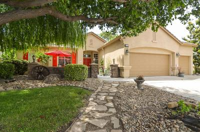 Manteca Single Family Home For Sale: 2484 Gibralter Drive