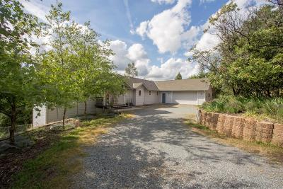 El Dorado County Single Family Home For Sale: 6180 Johntown Creek Road