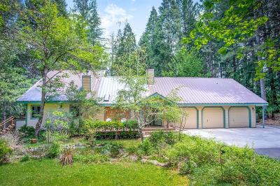 Nevada County Single Family Home For Sale: 18018 Lazy Dog Road