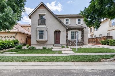 Mountain House Single Family Home For Sale: 356 West Fauna Avenue