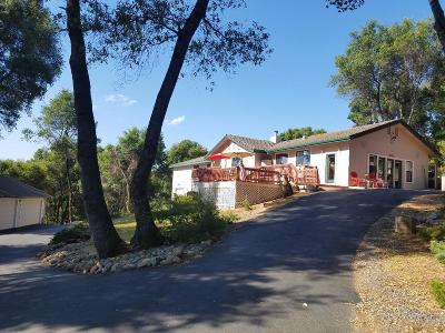 Groveland Single Family Home For Sale: 20711 Chaparral Court