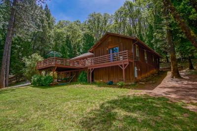Nevada County Single Family Home For Sale: 11665 Northern Lights Drive