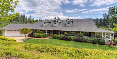 El Dorado County Single Family Home For Sale: 4750 Paso Court