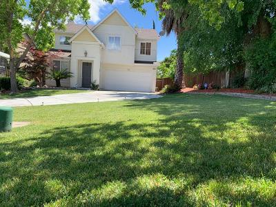 Tracy Single Family Home For Sale: 674 Nacomis Court