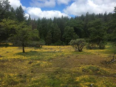 Pollock Pines Residential Lots & Land For Sale: Arundel