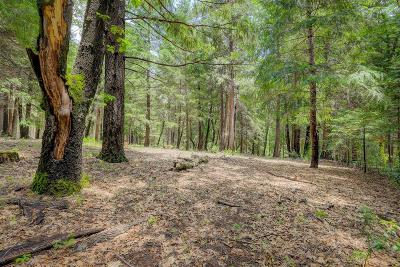 Nevada City Residential Lots & Land For Sale: 12054 Snowbourne Drive