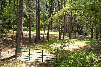 Grass Valley Residential Lots & Land For Sale: 12833 Blue Jay Court