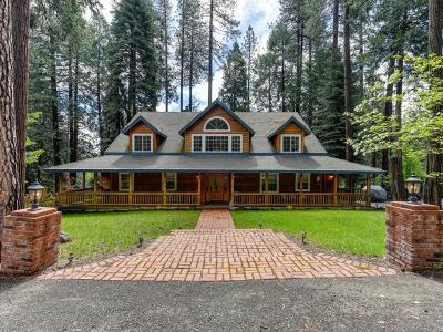 El Dorado County Single Family Home For Sale: 5125 Cayuga Road