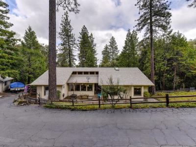 Amador County Single Family Home For Sale: 22861 Rocky Lane