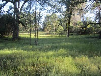 Placerville Residential Lots & Land For Sale: 2377 Swansboro Road