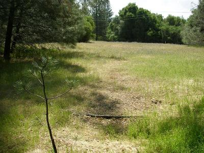 Placerville Residential Lots & Land For Sale: Sand Ridge Road