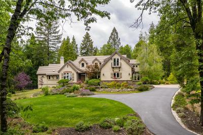 Nevada City Single Family Home For Sale: 13840 Altair