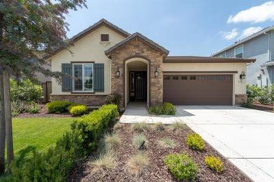 Ripon Single Family Home For Sale: 721 John Roos Avenue