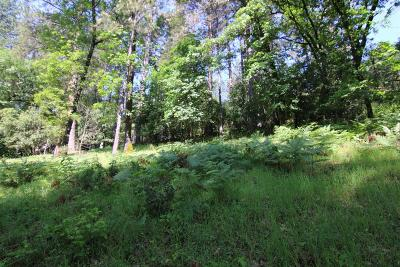 Grass Valley Residential Lots & Land For Sale: 14882 Stinson