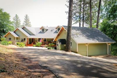 Grass Valley Single Family Home For Sale: 17818 River Ranch Road
