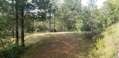 Sutter Creek Residential Lots & Land For Sale: 14141 Shake Ridge Road