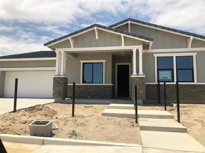 Manteca Single Family Home For Sale: 2011 Galleria Drive