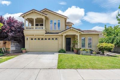 Tracy Single Family Home For Sale: 1672 Riverview Avenue