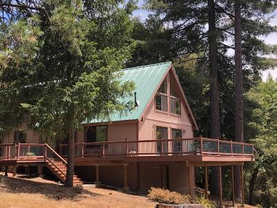 Grass Valley Single Family Home For Sale: 18039 Knoll Top Drive