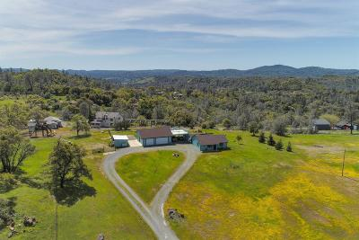 Placerville Single Family Home For Sale: 4590 Stoney Ridge Road