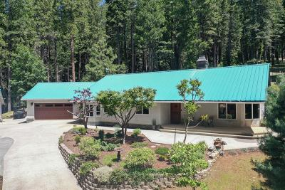 Nevada City Single Family Home For Sale: 13786 Wings Of Morning Drive