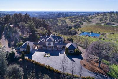 Amador County Single Family Home For Sale: 18600 Silver Oak Lane