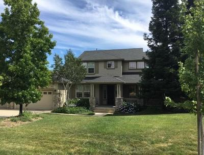 Copperopolis Single Family Home For Sale: 102 Knolls Ct.