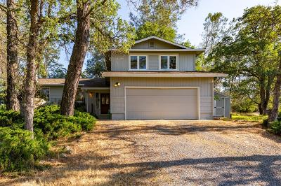 El Dorado County Single Family Home For Sale: 1061 Aaron Cool Drive