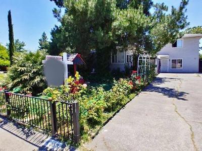 Sacramento Single Family Home For Sale: 4132 Boone Lane