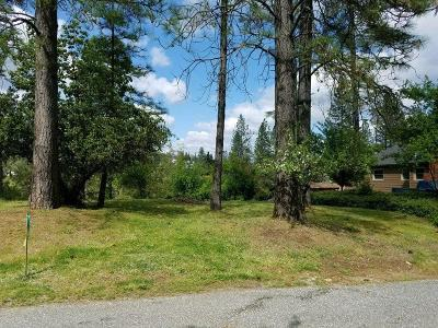 Grass Valley Residential Lots & Land For Sale: 10 Hill Street