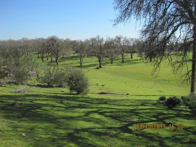 Valley Springs Commercial Lots & Land For Sale: 9414 Warren Road