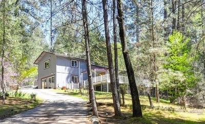 Foresthill Single Family Home For Sale: 6147 Green Oak