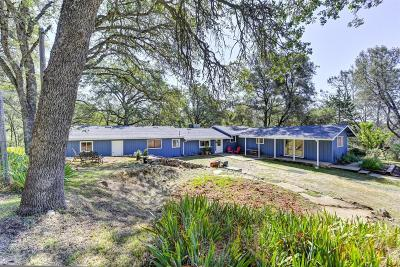 Placerville Single Family Home For Sale: 1501 Quail Run Road