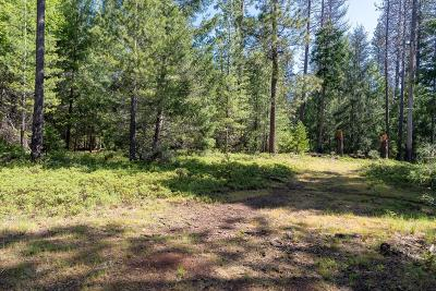 Grizzly Flats Residential Lots & Land For Sale: 4781 Huggy Bear Lane