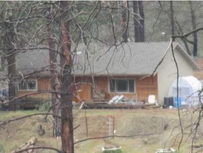 Mokelumne Hill Single Family Home For Sale: 17976 Pine Bark Lane