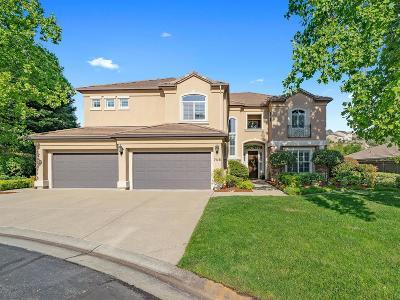 El Dorado Hills Single Family Home For Sale: 705 Spumante Court