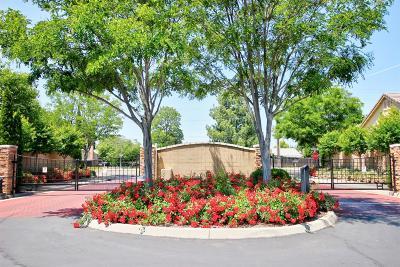 Sacramento Single Family Home For Sale: 4345 Magnifica Lane